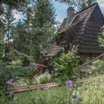 Domek z bali, czyli o leśnym życiu w nim – wywiad.