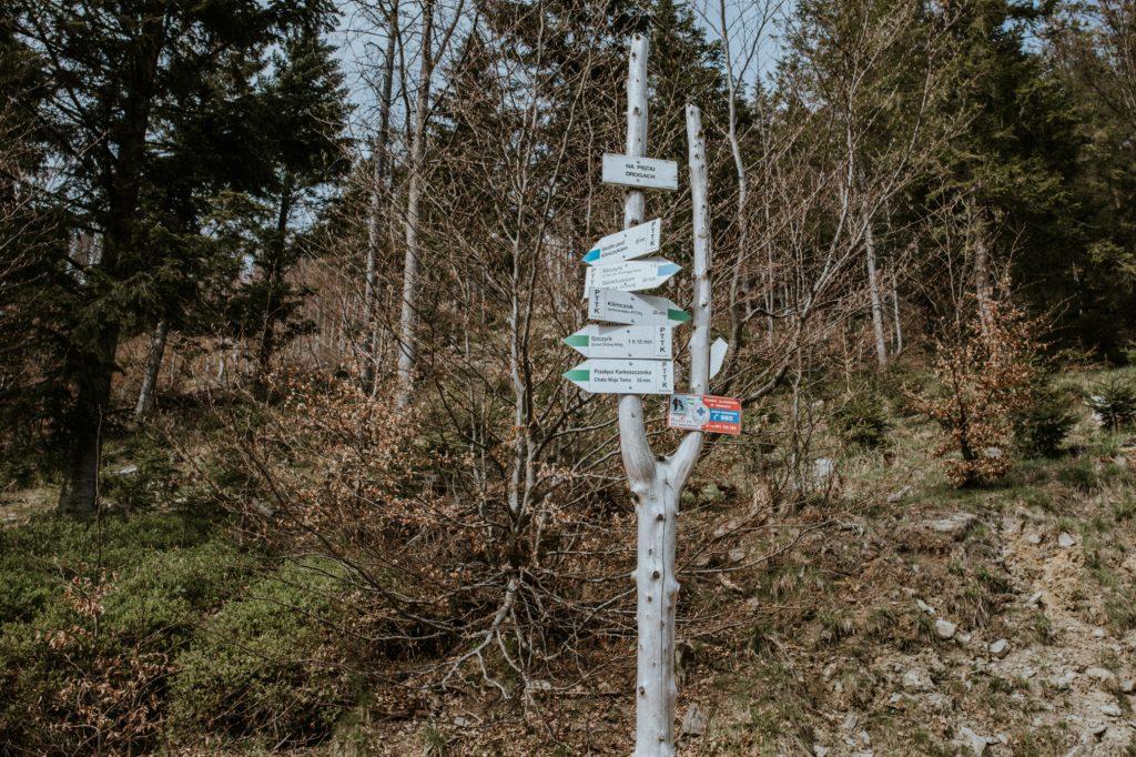 Jaki szlak na Klimczok jest najprostszy?