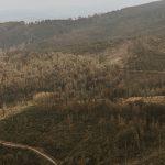 Jak wygląda Barania Góra i szlak przez Malinowską Skałę? [relacja]